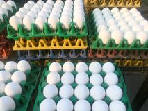 Chicken eggs for sale Stock Image