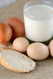 Chicken eggs with slices of bread Stock Image