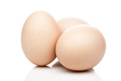 Chicken eggs standing  on white background Royalty Free Stock Photography