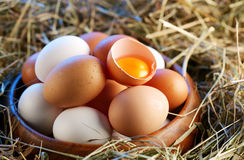 Chicken eggs in the straw with half a broken egg Royalty Free Stock Photos