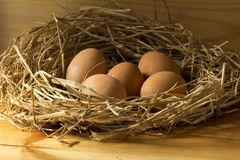 Chicken eggs in straw on wooden background stock photo
