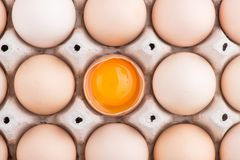 Chicken eggs closeup. homemade eggs chicken. Chicken eggs on the table. Cooking amlet. fresh eggs. the birth of little chickens stock photos