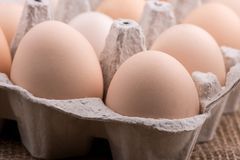 Chicken eggs closeup. homemade eggs chicken. Chicken eggs on the table. Cooking amlet. fresh eggs. the birth of little chickens royalty free stock images