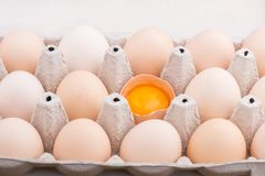 Chicken eggs closeup. homemade eggs chicken. Chicken eggs on the table. Cooking amlet. fresh eggs. the birth of little chickens stock photo