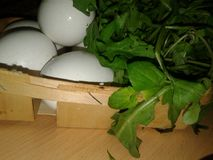 Chicken Eggs in a Trash. Greenery Stock Photo