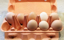 Chicken eggs in a tray stock images