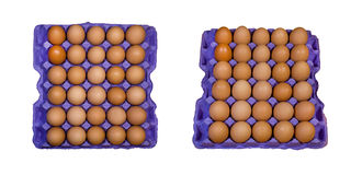 Chicken eggs in a tray Royalty Free Stock Photography