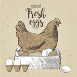 Chicken and eggs. Vector illustration in vintage style royalty free illustration