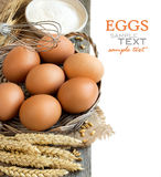 Chicken eggs, wheat and flour Royalty Free Stock Images