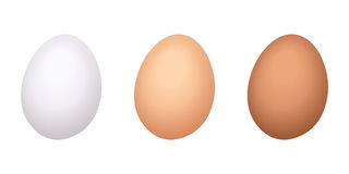 Chicken eggs. Royalty Free Stock Image