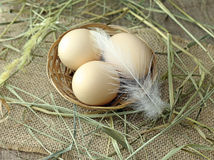 Chicken eggs in wicker basket Stock Photos