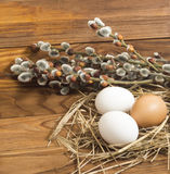 Chicken eggs. And willow twigs on wooden background Stock Images