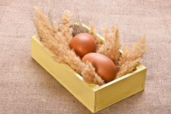 Chicken eggs in a wooden box Royalty Free Stock Photography