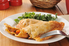 Chicken empanadas Stock Image