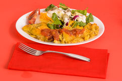 Chicken Enchilada on Red Stock Images