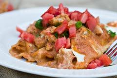 Chicken Enchiladas Royalty Free Stock Photography