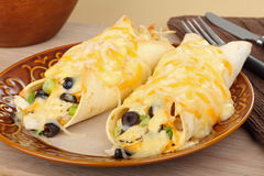 Chicken Enchiladas Royalty Free Stock Images