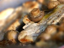 Chicken escallop with mushroom. S, close up Stock Photo