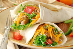 Chicken Fajitas Royalty Free Stock Images