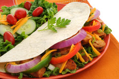 Chicken Fajitas Royalty Free Stock Photos