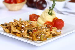 Chicken Fajitas with Vegetables Royalty Free Stock Photo