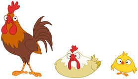 Chicken family Stock Photography