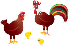 Chicken Family Illustration Royalty Free Stock Photos