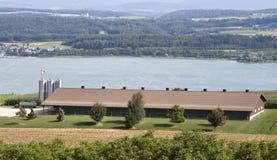 Chicken farm. Modern chicken farm in Switzerland Royalty Free Stock Photo