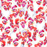 Chicken farm graphics Chicken Farm watercolor background. rooster illustration Royalty Free Stock Photography