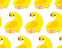 Chicken farm seamless pattern. Vector background of chickens and Royalty Free Stock Photos