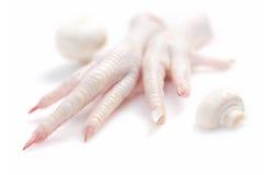 Chicken feet. Over white background Stock Photos