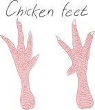 Chicken feet. Drawing hand chicken feet on a blank background. Vector illustration Stock Image