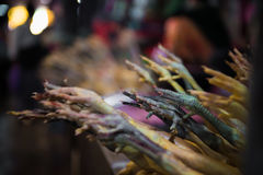 Chicken feet at the market. Sellers displaying their chicken for sale in a local market in Cambodia Royalty Free Stock Photo