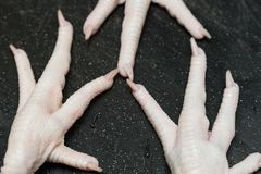 Chicken feet raw cleaned with toes. Chicken feet cleaned and stripped with toenails on black cutting board Royalty Free Stock Photos