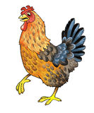 Chicken figure Royalty Free Stock Photo