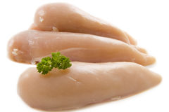 Chicken filet Royalty Free Stock Photo