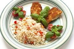 Chicken Filet with rice Stock Image