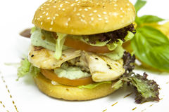 Chicken Fillet Burger. With tomato Stock Images
