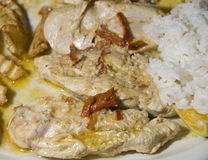Chicken fillet nicaragua style with rice Royalty Free Stock Images