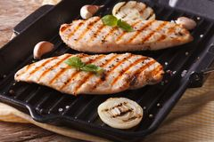 Chicken fillet with onion and basil in a pan grill horizontal Royalty Free Stock Photos