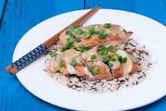 Chicken fillet served with miso sauce and rice Stock Images