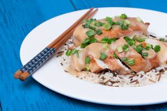 Chicken fillet served with miso sauce and rice Royalty Free Stock Image