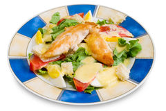 Chicken fillet with vegetables Royalty Free Stock Images