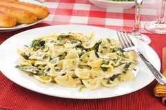 Chicken Florentine. A plate of chicken florentine with breadsticks royalty free stock photography