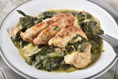 Chicken florentine closeup. Closeup of a plate of gourmet chicken florentine stock image