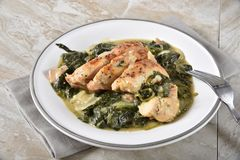 Chicken florentine dinner. High angle view of a plate of gourmet chicken florentine stock images