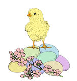 Chicken and flowers Stock Photography