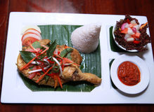 Chicken food. Portion of indonesian chicken with rice Stock Image
