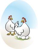 Chicken, free-range eggs Stock Image