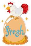 Chicken and fresh egg Stock Photo